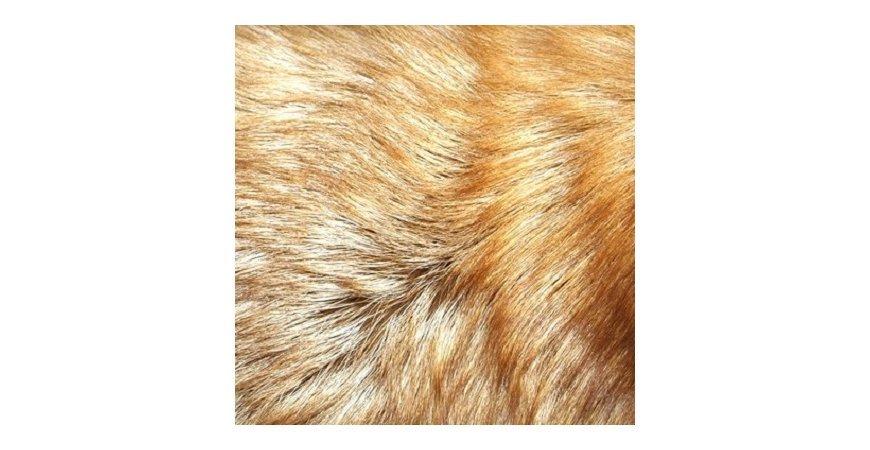 Types of Fur