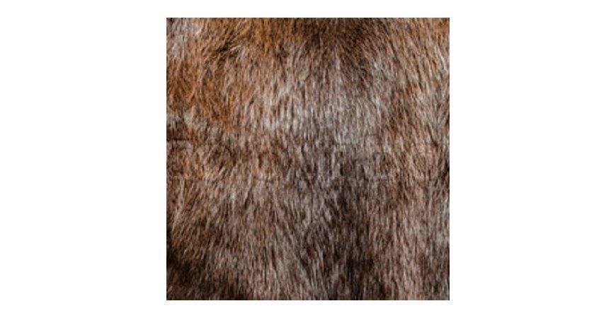 Fur Types